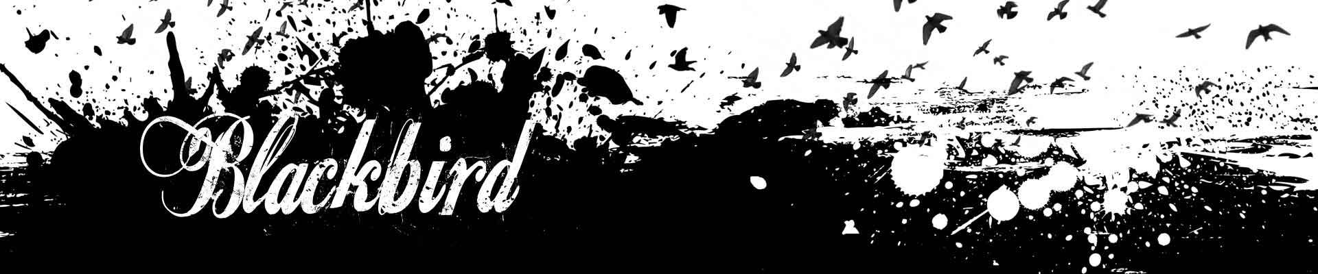 blackbird eb's climbing shoe